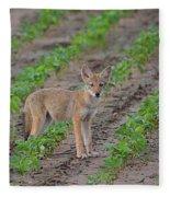 Coyote Pup Fleece Blanket