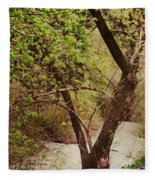 Cozy Stream In American Fork Canyon Utah Fleece Blanket