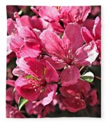 Crab Apple Blossoms 04302015-1 Fleece Blanket