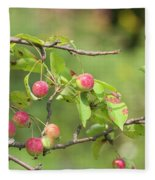 Crab Apple Fruit Fleece Blanket