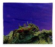 Crab Cakez 5 Fleece Blanket