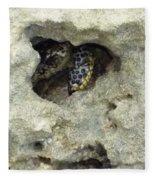 Crab Hiding In A Rock On The Seashore Fleece Blanket