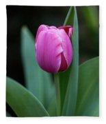 Cradled Pink Tulip Fleece Blanket