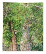 Craggy Tree For Will Fleece Blanket