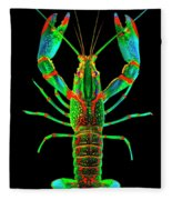 Crawfish In The Dark - Orivibsat Fleece Blanket