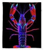 Crawfish In The Dark-  Redblue Fleece Blanket