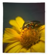 Crawling June Beetle Fleece Blanket