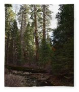 Creek And Giant Sequoias In Kings Canyon California Fleece Blanket