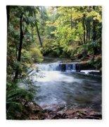 Creek, Frozen In Time Fleece Blanket