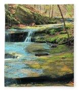 Creek In Dappled Light At Don Robinson State Park 1 Fleece Blanket