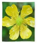 Creeping Buttercup Fleece Blanket