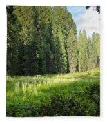 Crescent Meadow In Sequoia Fleece Blanket