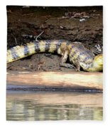 Croc Time Fleece Blanket