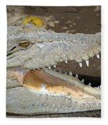 Crocodile Rock Fleece Blanket