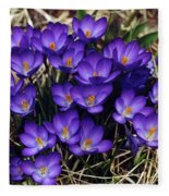 Crocus Fleece Blanket