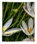 Crocus White Flowers Fleece Blanket