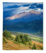 Crow On A Mountainside Fleece Blanket