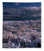 Crowley Lake Fleece Blanket
