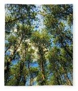 Crystal Lake Il Pine Grove And Sky Fleece Blanket