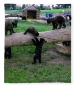 Cubs At The Playground Fleece Blanket