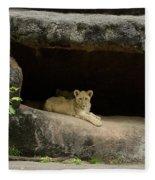 Cubs In Cave Fleece Blanket