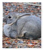 Cuddly Campground Bunny Fleece Blanket