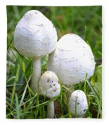 Cumberland Toadstools Fleece Blanket