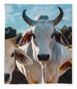 Cupcake Cows Fleece Blanket