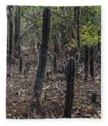 Curacao - Blooming Cacti In The Forest Fleece Blanket