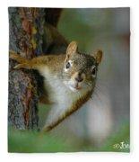 Curious Alaskan Red Squirrel Fleece Blanket