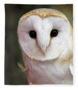Curious Barn Owl Fleece Blanket