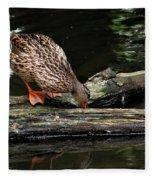Curious Duck Fleece Blanket