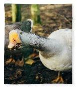 Curious Grey Goose Fleece Blanket