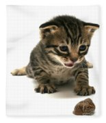 Curious  Kitten Fleece Blanket