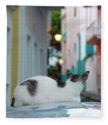 Curious Kitty Fleece Blanket