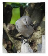 Curious Mockingbird Fleece Blanket