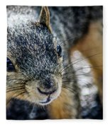 Curious Squirrel Fleece Blanket