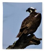 Curved Osprey Fleece Blanket