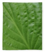 Curvy Leaf Lines Fleece Blanket