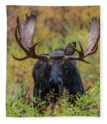 Custer In Autumn Fleece Blanket