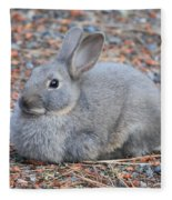 Cute Campground Rabbit Fleece Blanket