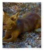Cute Fox Friend  Fleece Blanket by Colette V Hera Guggenheim