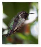 Cute Hummingbird Ready For Action Fleece Blanket