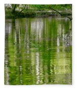 cypress forest and swamp of Congaree National Park in South Caro Fleece Blanket