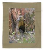 Cypress Knee Fleece Blanket