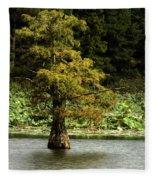 Cypress Matters Fleece Blanket
