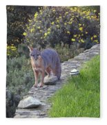 D-a0037 Gray Fox On Our Property Fleece Blanket