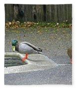 D-a0048 Mallard Ducks In Our Yard Fleece Blanket