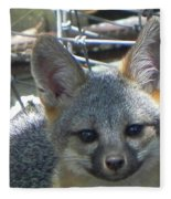 D-a0068 Gray Fox Pup Fleece Blanket