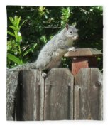 D-a0071-e-dc Gray Squirrel On Our Fence Fleece Blanket